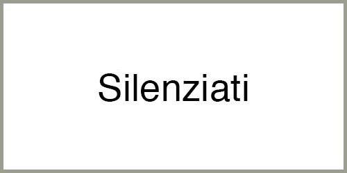 Generatore-di-corrente-silenziato