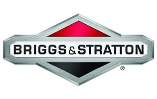 Tutti i prodotti Briggs and Stratton