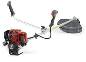 Decespugliatore Honda Power Equipment su Lineonline
